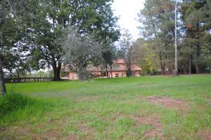 Prato verde vicino alla casa