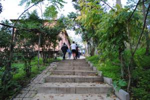 Scale di accesso tettoia